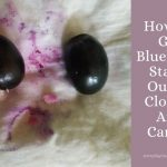 How To Get Blueberry Stains Out Of Clothes And Carpet