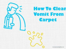 How To Clean and Remove Vomit Stains From Carpet