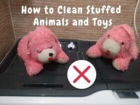 How To Clean Stuffed Animals At Home